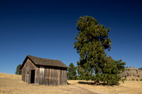 Photograph of a wooden building on Wild Horse Island by Crystal Nederman
