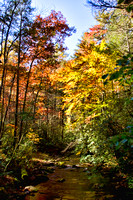Color photograph of the fall colors in the Smoky Mountains by Crystal Nederman